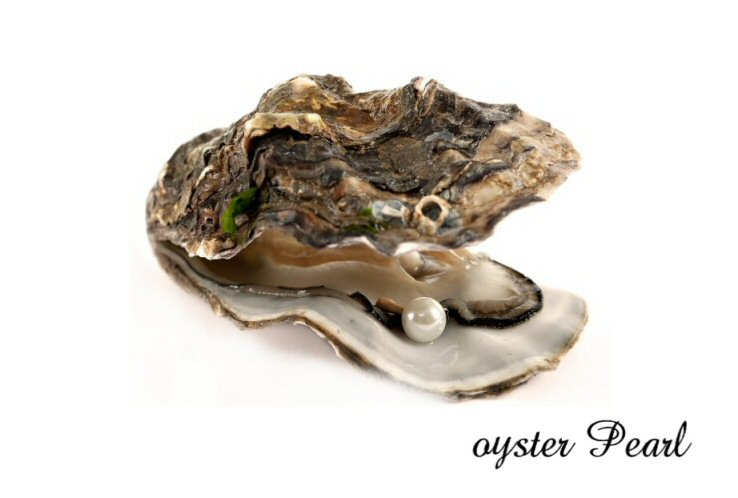 oyster pearls